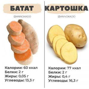 Батат vs картофель