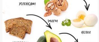Шпаргалка по составлению приемов пищи