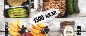Рацион на 1500 ккал