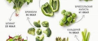 Зелёные овощи